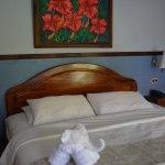 Изображение Hotel Playa Espadilla