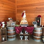 Naked wedding cake, chocolate grooms cake and cupcakes