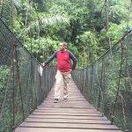 Green Forest Resort Photo