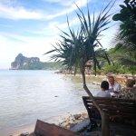 Photo of Sunflower Beach Bar