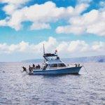 Maui Dive Shop's dive boat, the Maka Koa.
