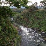Salto de Eyipantla Foto