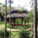 Yalong Bay Tropical Paradise Forest Park Foto