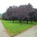 Садово-ландшафтный дизайн замковой территории