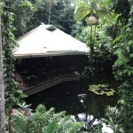 Photo of Daintree EcoLodge & Spa