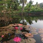 Foto de Lonely Planet