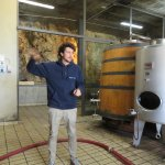 Our winery tour guide