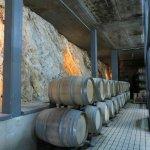 Winery barrels and bedrock