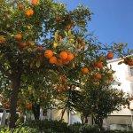 Photo de Hôtel Agadir Beach Club