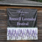 Don't miss the Roswell Lavender Festival held the 2nd Saturday of June at Barrington Hall