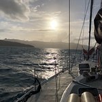 Cruise Whitsundays Foto