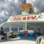 Caicos Dream Tours Foto