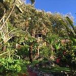 Foto de Hotel El Jardin