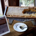 Breakfast with fresh honey - loved this