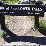 Lower Falls sign - Yellowstone National Park