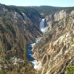 Grand Canyon of the Yellowstone and Lower Falls - Yellowstone NP