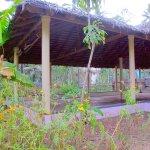 Sharanagati Yogahaus Foto
