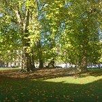 Lovely Centre Park