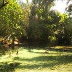 Hot Springs at Kapishya in a beautiful setting