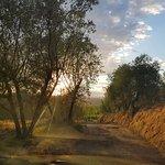 Agriturismo Borgo Stella Foto