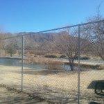 Dog Park has views of Turtleback Mts and River