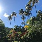 Fond Doux Plantation & Resort Foto