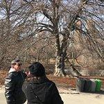 Photo de Central Park Pedicab Tours