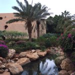 Photo of Movenpick Resort & Spa Dead Sea