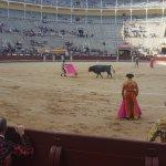Bullfights in Madrid