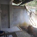 outdoor bathroom garden area + shower