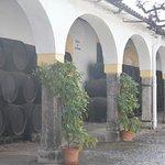 Photo of Bodegas Fundador