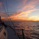 Foto de Blue Crab Chesapeake Charters