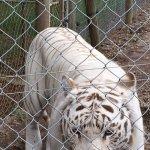 Photo of Jukani Wildlife Sanctuary