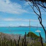 Tobago Caysの写真