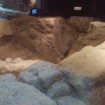 Foto de Museo Arqueológico de Córdoba