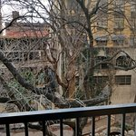 Room 311 balcony view