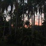 Foto de Cooinda Lodge Kakadu