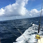 More trolling off Grenada on a beautiful day