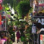 Photo of Mercado de Coyoacan