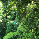 Photo of Canopy Safari