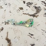 Trash on the beach EVERYDAY we were there.  No one bothers to clean it up & No equipment to clea