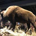 Photo de Blackhawk Museum