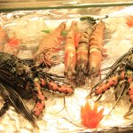 Lobsters and Praws