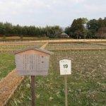 Photo de Korakuen Garden