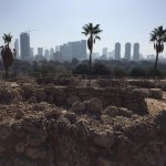 View from Archeological Tel Qasile at Erez Israel Museum