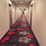 Foto de Hampton Inn & Suites Roanoke Airport