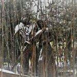Statue di Giuseppe Garibaldi e Anita