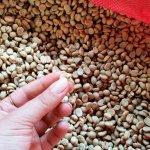 Pergament coffee - needs de-shelling