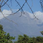 The view of Mt Meru from the tea room over the swamp
