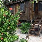 Foto de Harry's Cozy Cabanas